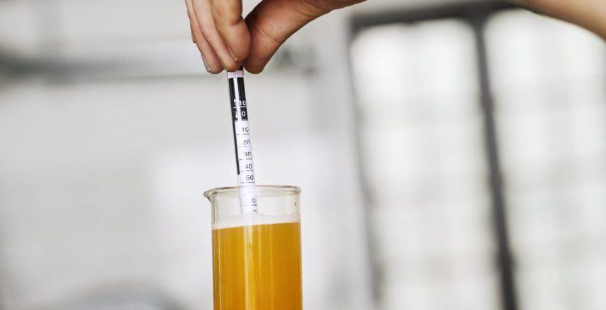 Bierwürzespindel, Alkoholgehalt